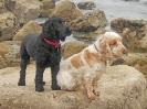 Macy & Charlie
