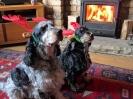 Rufus & Millie